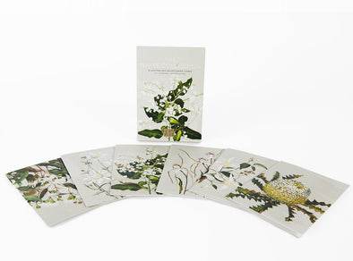 The White Collection Boxed Cards by Bell Art