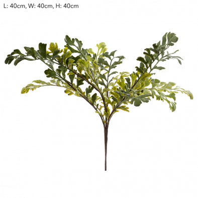 Fern Grass Bush 50cm
