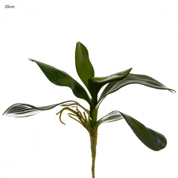 Artificial Orchid Leaf Cluster 35cm - Green