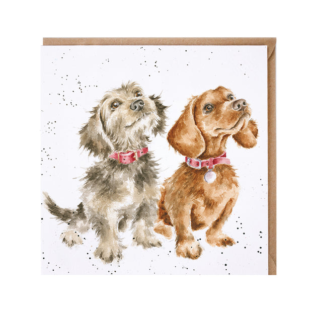 Treat Time Greeting Card