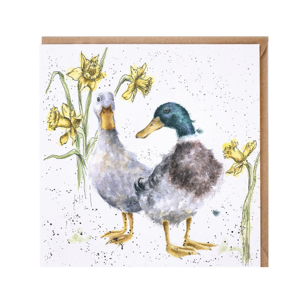 Wrendale Ducks & Daffs Greeting Card