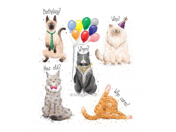 Mini Card - Birthday Cats