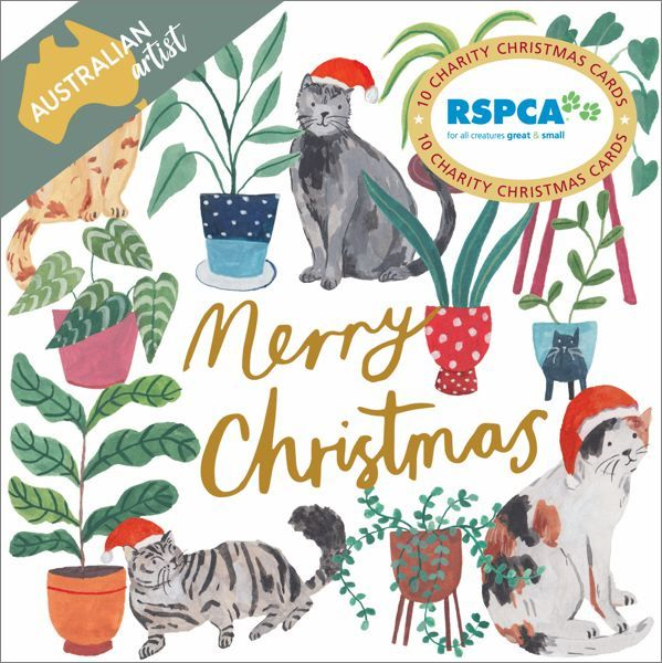 RSPCA Charity Christmas Card Pack - Santa Cats