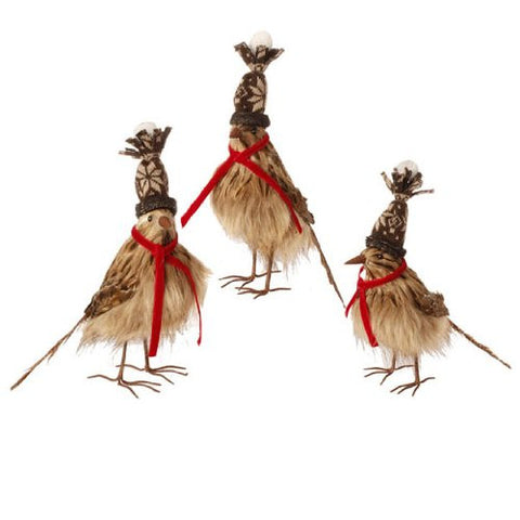 RAZ Imports - FEATHERED BIRDS (Set of 3)