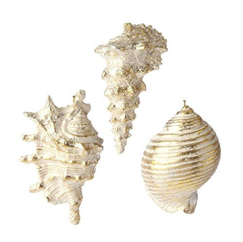 "RAZ Imports - Coastal Christmas - 4"" Gold Dusted Seashell Ornaments - Set of 3"