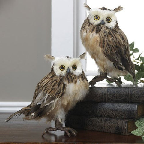"RAZ Imports - 10"" Brown Feathered Owls"