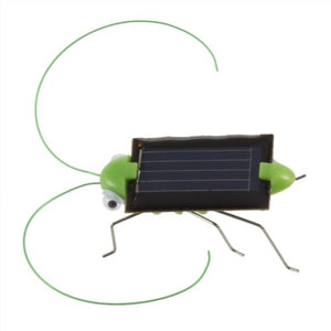 Solar Powered Grasshopper - Wholesale Vending Products