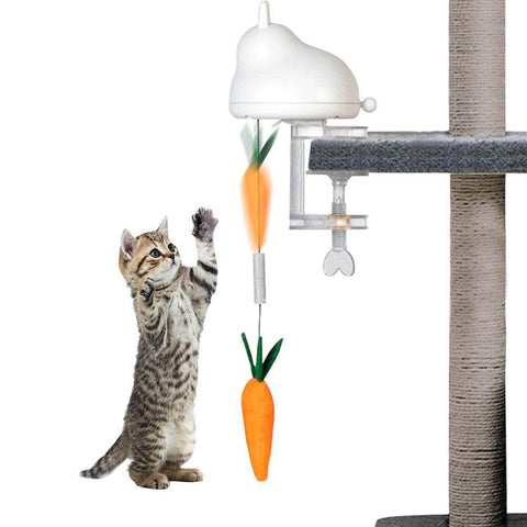 Electric Cat Toy Automatic Lifting Spring Rod - pethomeus
