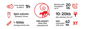 Revolugen-fire-monkey-DNA-N50-62Kb read