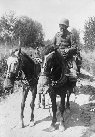 horses with gas masks