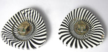 Load image into Gallery viewer, Vintage 1930s Zebra Design Rhinestone Earrings