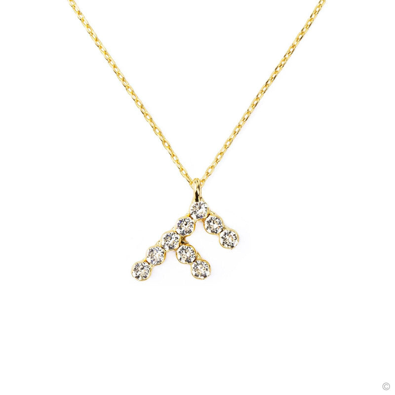Coravana - F Crystal Necklace
