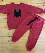 Load image into Gallery viewer, Boys Monster | Red Sweater
