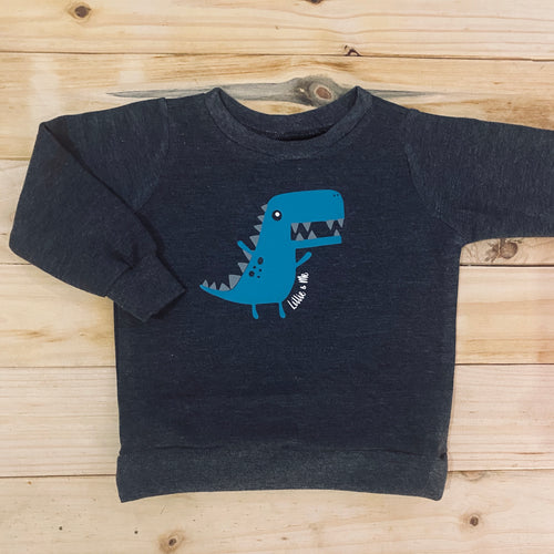 Boys Dino | Dark Grey Sweater