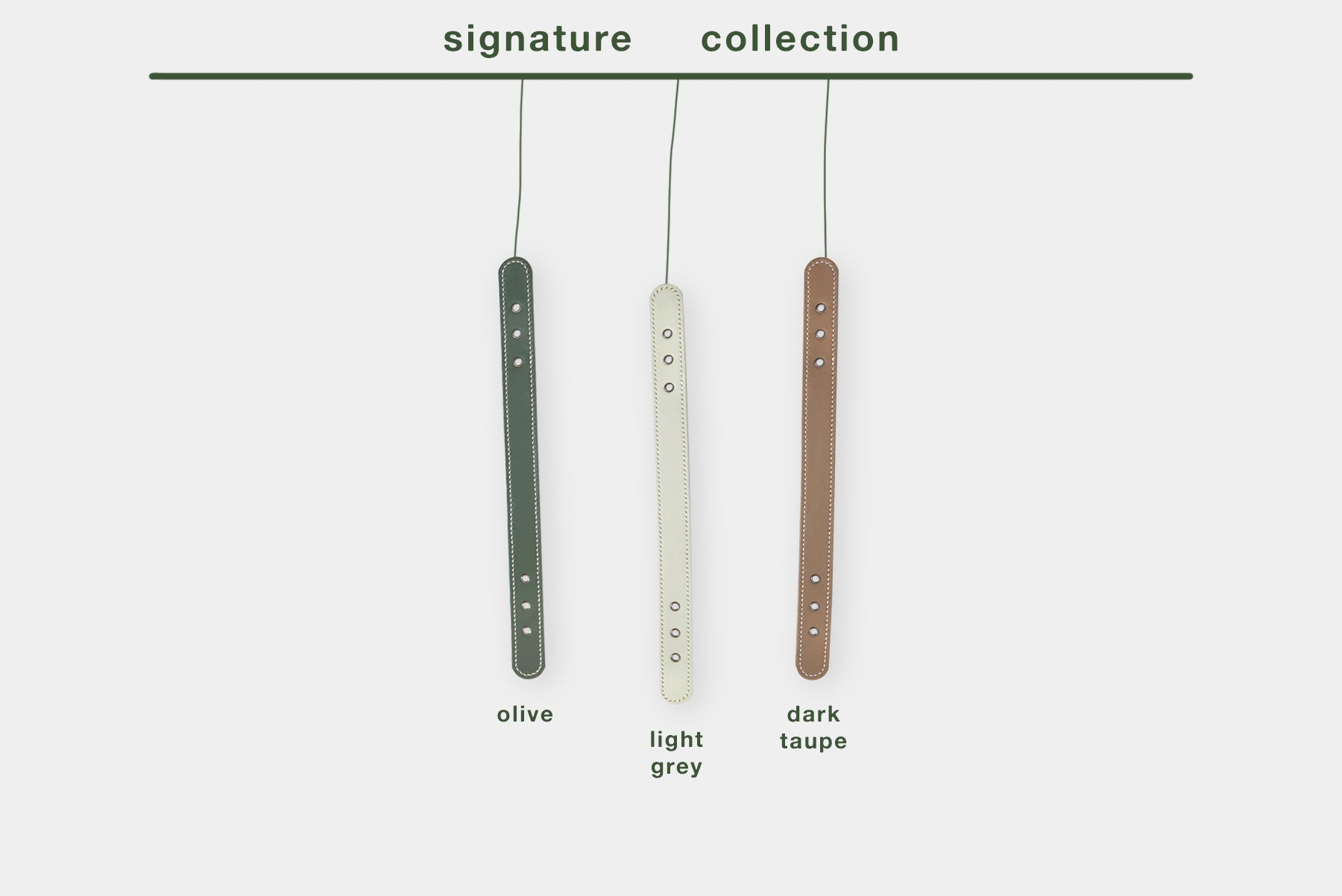 color chart - signature collection
