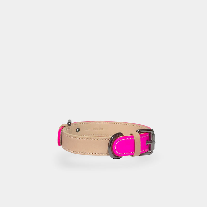 dog collar - x-large