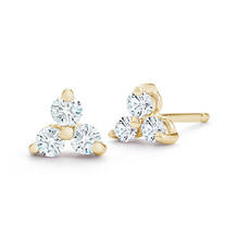 Load image into Gallery viewer, diamond rio earrings
