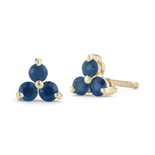 Load image into Gallery viewer, sapphire rio earrings