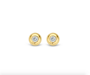 Ti Sento Milano Stud earrings