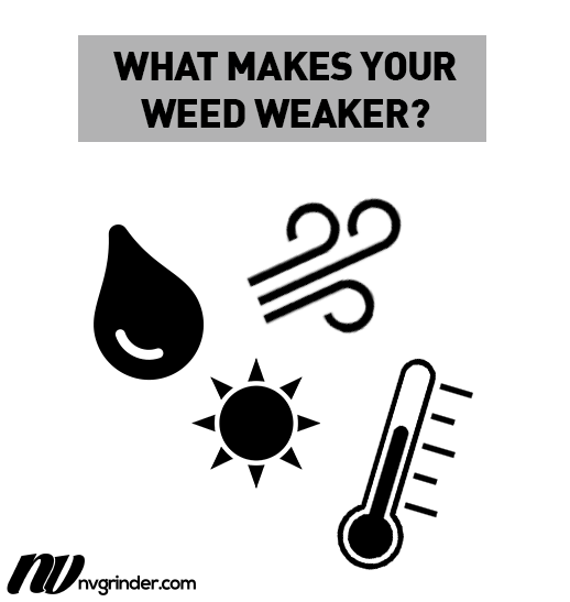 What makes your weed weaker