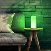 Philips Dimmable light - AI LIFE HOLDINGS
