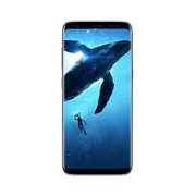 Galaxy S8 64GB Factory Unlocked - AI LIFE HOLDINGS