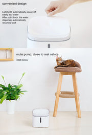 Pet water dispenser - AI LIFE HOLDINGS