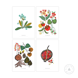 Seasons Series Art Postcard Pack