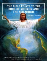 Bible Points to the Book of Mormon and the New World, The, by Roy E. Weldon