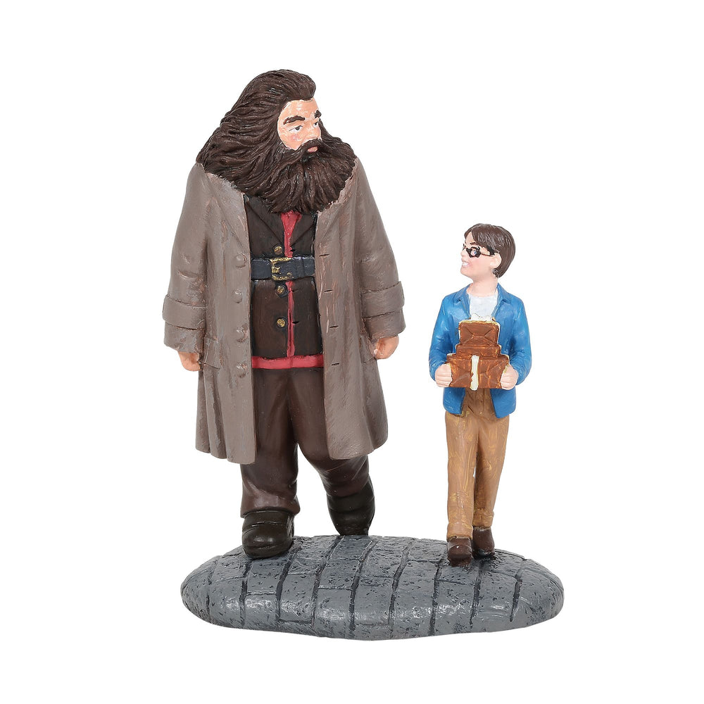 Harry Potter Village Basic Wizard Supplies (Harry Potter and Hagrid Figurine)