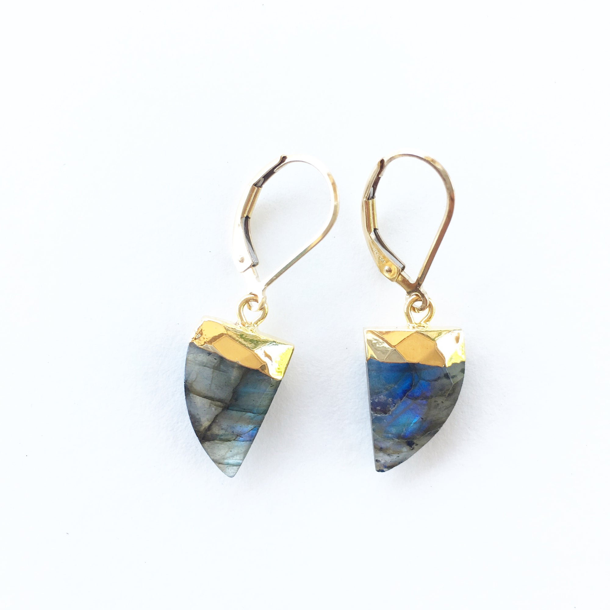Labradorite Horn Earrings