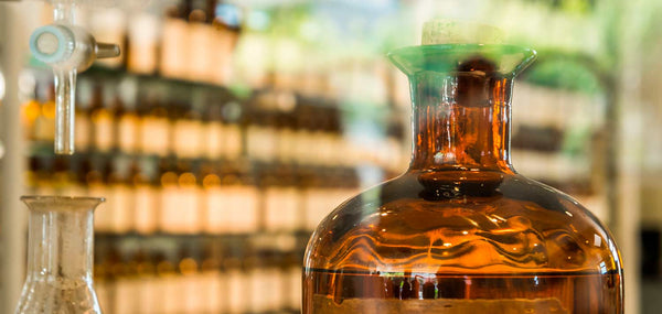 Discover what amber is and what it is used for in perfumery