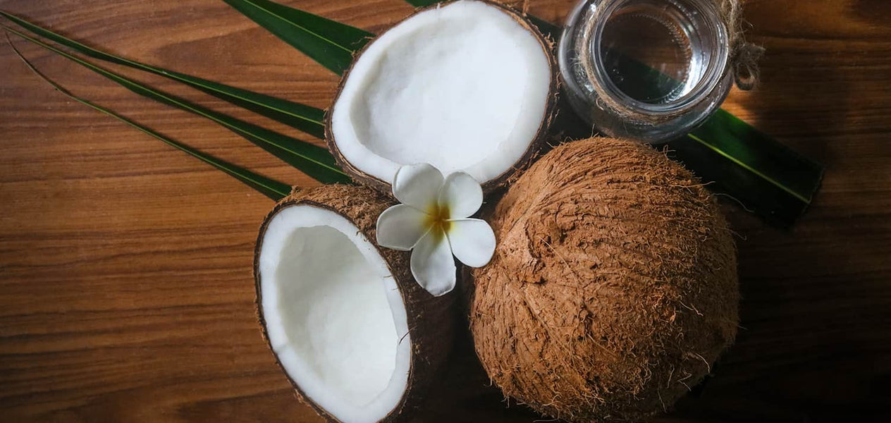 Perfumes with a coconut scent to uplift your day and revitalise you