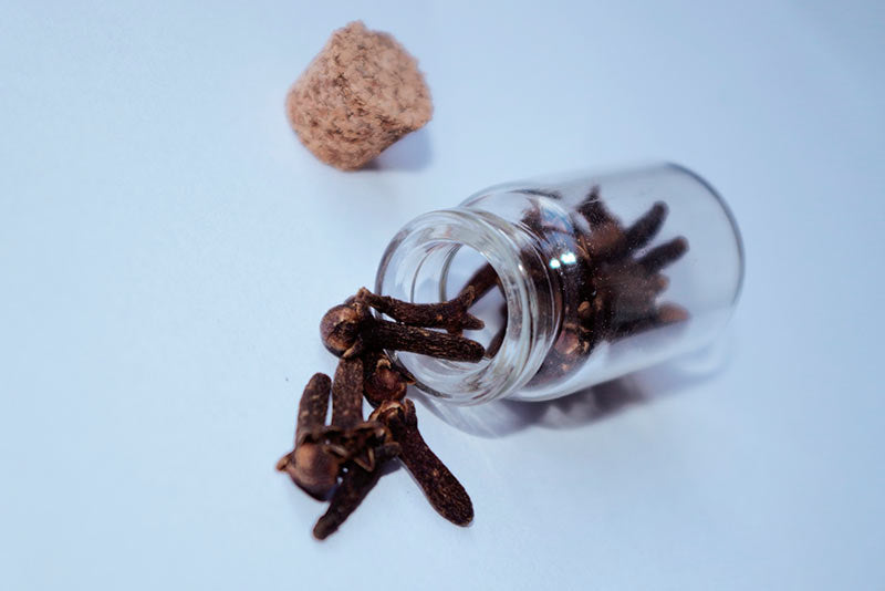 Know what cloves are, their properties and what they are for