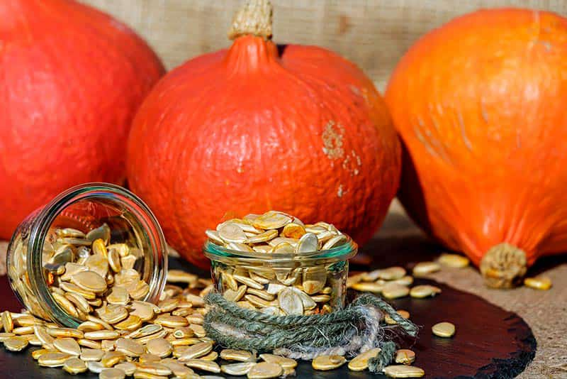 Find out about benefits and risk to our health of eating seeds