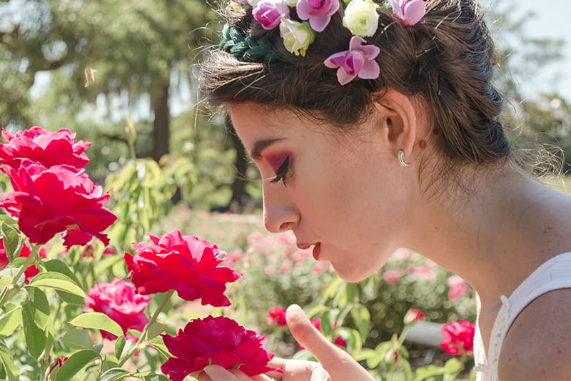 There are many types of roses such as the Damascus rose or the Moroccan rose
