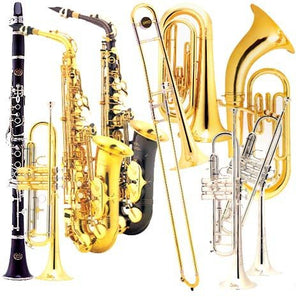 Brass and Woodwind Instruments Step up and Professional