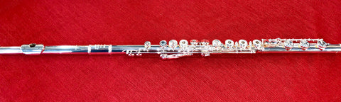 WM. S. Haynes Sterling Silver Flute Model HFLBRVO2