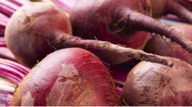 The Truth About Beetroot and Nitric Oxide