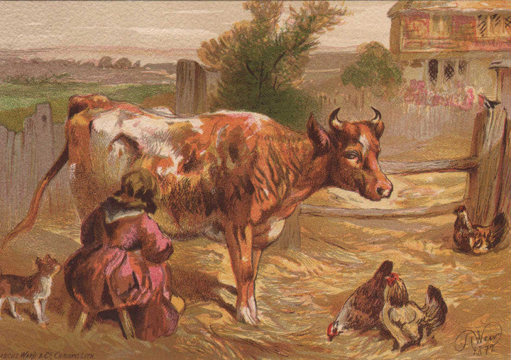Old Nancy Milking the Cow by Harrison Weir, 1872