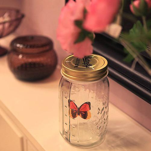 Magic Butterfly Jar