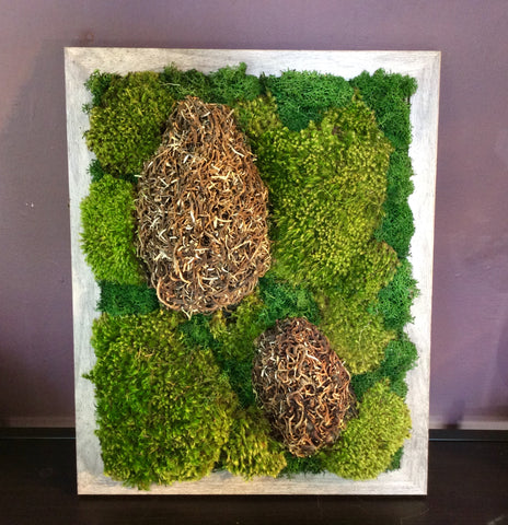 Preserved moss picture (large)