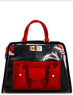 Transparent Red & Black Purse