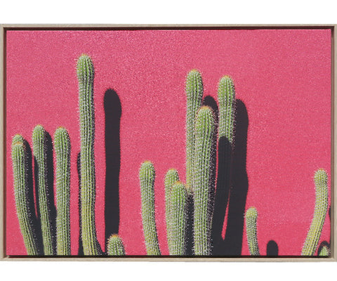 Cactus With Pink Wall Framed Art