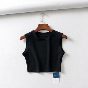 Slinky Sleeveless Crop Top