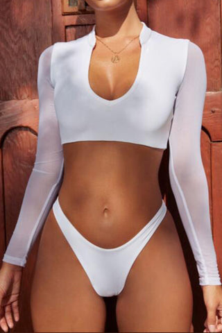 Sexy mesh long-sleeved bikini split swimsuit