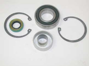 Bearing, Bushing & Seal Kit for Big Twin Primary ('94-Later)
