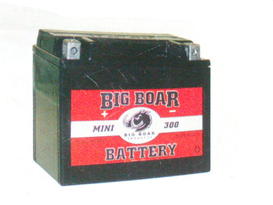12v Big Boar Mini Battery For Custom Use