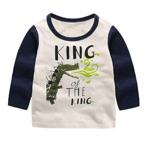 Printed Boys Long Sleeve Tops