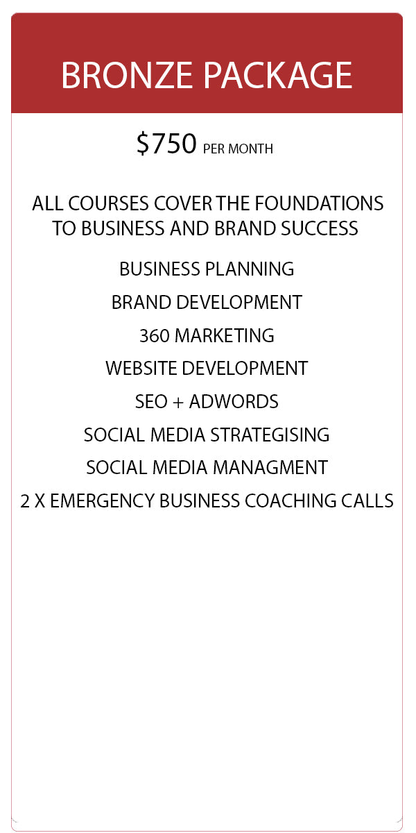 Business Coaching Package - Bronze | Social Pirate